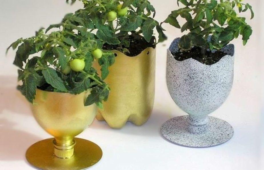 macetas-para-plantas